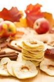 Manzanas y hojas de otoño secadas Imágenes de archivo libres de regalías