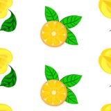 Manzanas y naranjas de la fantasía Imágenes de archivo libres de regalías