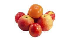 Manzanas y nectarinas con los caquis imágenes de archivo libres de regalías