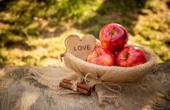 Manzanas y palillos de canela jugosos Manzanas rojas de la cosecha del otoño en la cesta Imágenes de archivo libres de regalías