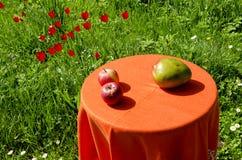 Manzanas y par. Alimento ecológico. Foto de archivo libre de regalías