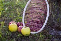 Manzanas y uvas foto de archivo