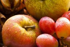 Manzanas y uvas Fotos de archivo libres de regalías