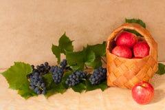 Manzanas y uvas de la fruta Fotografía de archivo