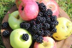 Manzanas y zarzamora fotografía de archivo