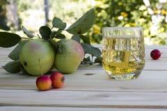 Manzanas y zumo de manzana con hielo en una tabla Fotografía de archivo libre de regalías
