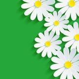manzanilla de la flor 3d, extracto del fondo de la primavera ilustración del vector