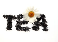Manzanilla en las hojas de té Imagenes de archivo
