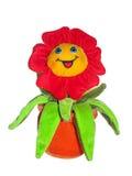 Manzanilla feliz 02 Imagen de archivo libre de regalías