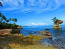 Manzanillo strand arkivfoton
