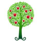 Manzano verde Fotos de archivo libres de regalías