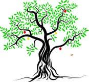 Manzano verde por completo de las manzanas rojas aisladas Foto de archivo libre de regalías