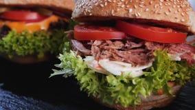 Manzo appetitoso, maiale tirato ed hamburger del pollo in una fila video d archivio