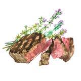 Manzo con timo Bistecca del ribeye dell'acquerello Illustrazione disegnata a mano Isolato su priorità bassa bianca Fotografie Stock Libere da Diritti