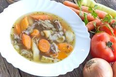 Manzo e minestra di verdura in piatto Fotografie Stock