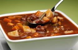 Manzo e minestra di verdura robusti fotografia stock libera da diritti