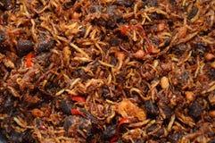 Manzo fritto dei peperoncini rossi Fotografia Stock