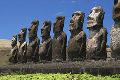 Maois. Line up of maois on Easter island Royalty Free Stock Photo