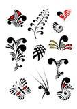 Maori σύνολο χρώματος στοιχείων σχεδίου Koru Στοκ εικόνες με δικαίωμα ελεύθερης χρήσης