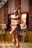 Maori Immagine Stock