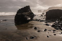 Maori Bay na maré baixa Imagens de Stock
