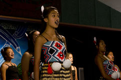 Maori Cultural Show Royalty Free Stock Images