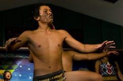 Maori Cultural Show Stock Image