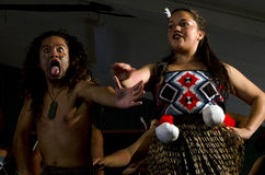 Maori Cultural Show Stock Photography