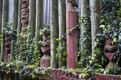 Maori- geschnitzte Masken mit Blättern herum lizenzfreie stockfotografie