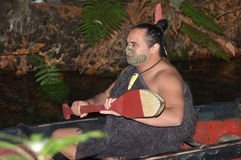 Maori man in traditional waka boat. ROTORUA, NZL - APR 25 2017:Maori man in traditional waka boat.Maori are the indigenous people of New Zealand that migrated to stock photography