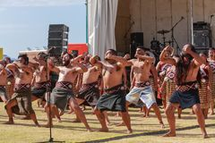 Group of Maori men doing traditional dance, New Zealand. Maori men flex their muscles and grimace as they perform a haka, a traditional Maori dance, at Mount royalty free stock images