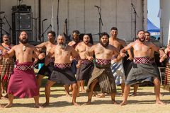 Maori men performing a haka, New Zealand. A group of Maori men dressed in traditional costume performing a haka at Mount Maunganui, New Zealand. The haka is a stock photos