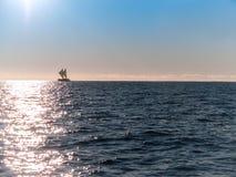 Maori sailing waka of Tauranga coast. Stock Photo