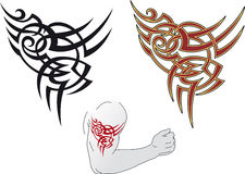 Maori tattoo design Stock Image