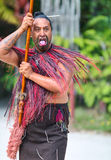 Maori tribes traditional greeting show. New Zealand Royalty Free Stock Photo