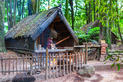 Maori tribes traditional village. Royalty Free Stock Images