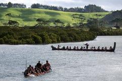 Maori War Waka Canoe Royaltyfri Fotografi