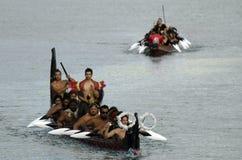 Maori War Waka Canoe Royaltyfria Bilder