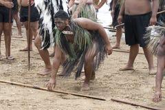 Maori warrior at a Haka at Waitangi royalty free stock image