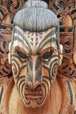 Maori warrior Stock Images