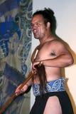 Maori warrior Royalty Free Stock Image