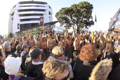 Maori warriors parade RWC 2011 Stock Images