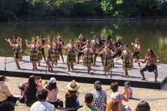 Maoridansers in traditioneel kostuum, Hamilton, Nieuw Zeeland stock fotografie