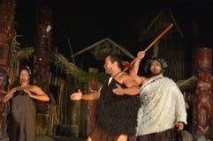 Maorifolkallsång och dans Arkivbilder