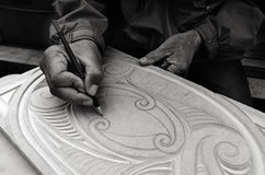 Maorimannen räcker teckningsmodeller av Maori Wood att snida Royaltyfri Foto