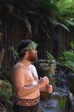 Maoryjscy kultura mężczyzna obrazy royalty free