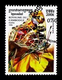 Map Butterfly Araschnia levana, Butterflies serie, circa 1999. MOSCOW, RUSSIA - NOVEMBER 24, 2017: A stamp printed in Cambodia shows Map Butterfly Araschnia Stock Photography