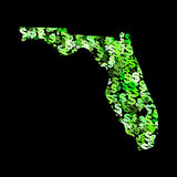 Map of Florida with dollars Royalty Free Stock Images