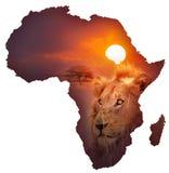 Mapa africano dos animais selvagens Imagem de Stock Royalty Free