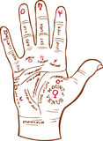 Mapa da leitura da palma ilustração do vetor